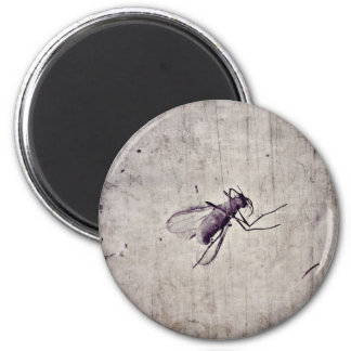 Fly insect inside amber stone | 6 cm round magnet