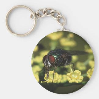 fly basic round button key ring