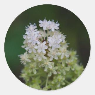Fly Poison White Wildflower Floral Round Stickers