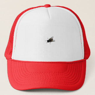 fly trucker hat