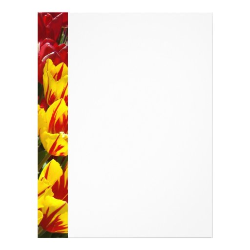 Flyer paper Tulip Flowers Yellow Red Tulips