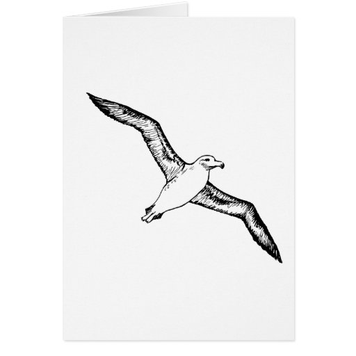 Flying Albatross Illustration Greeting Card