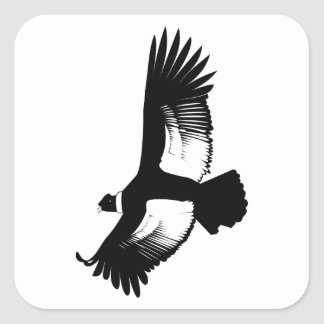 Flying Andean Condor Square Sticker