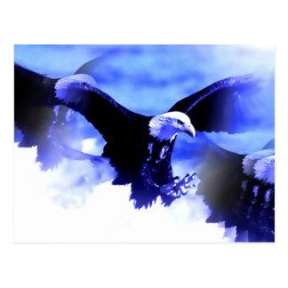 Flying Bald Eagle Postcards