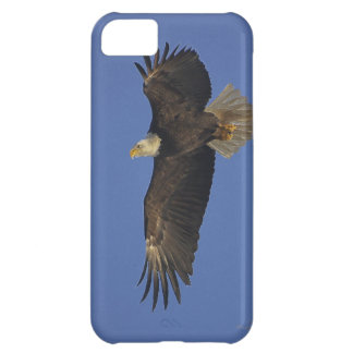 Flying Bald Eagle Wildlife-supporter Art iPhone 5C Case