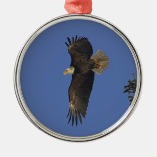 Flying Bald Eagle Wildlife-supporter Art Silver-Colored Round Decoration