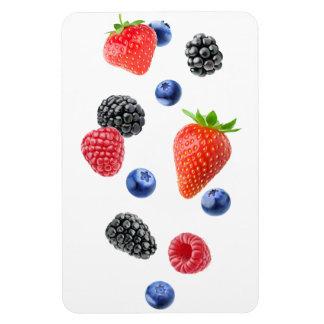 Flying berries magnet