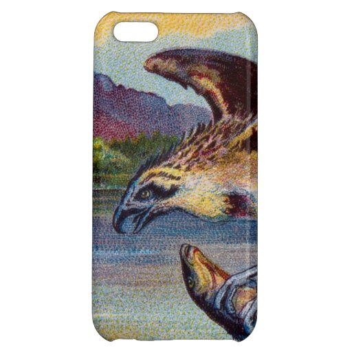 Flying Bird Of Prey With Fish iPhone 5C Covers