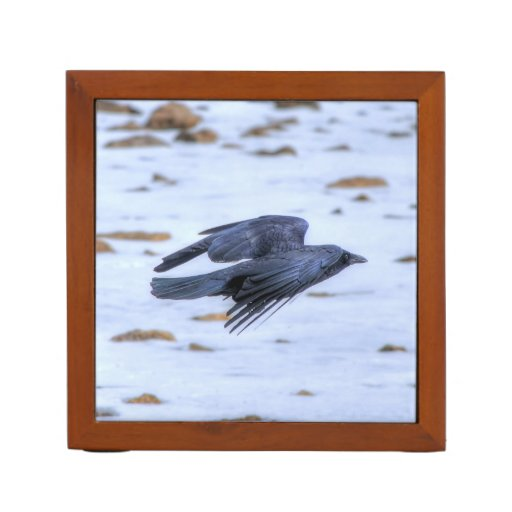 Flying Black Raven Gothic, Celtic, Wildlife Pencil/Pen Holder