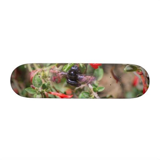 Flying Bumblebee Custom Skate Board