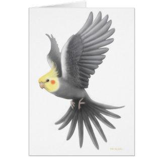 Flying Cockatiel Card