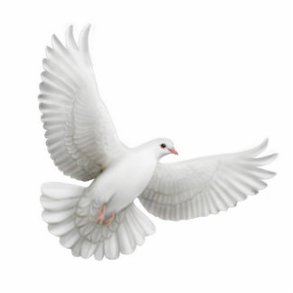 Flying Dove Ornament Photo Sculpture Decoration