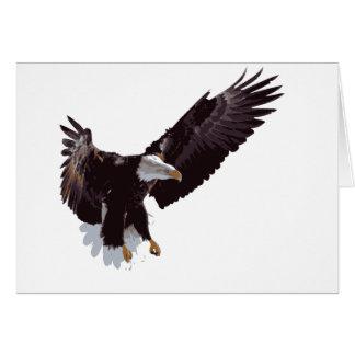 Flying Eagle Cards