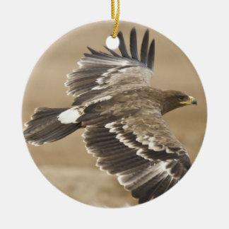 Flying Eagle Ornament