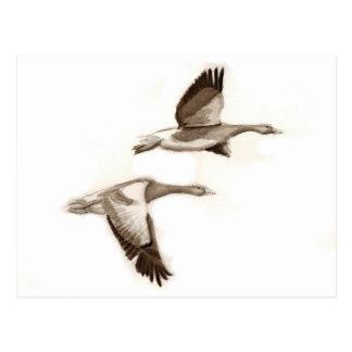 Flying geese drawing postcard