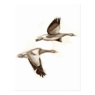 Flying geese drawing postcard