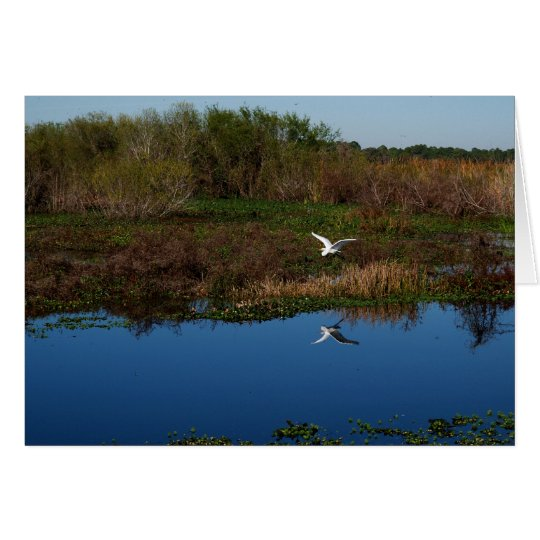 Flying Heron Reflected Card
