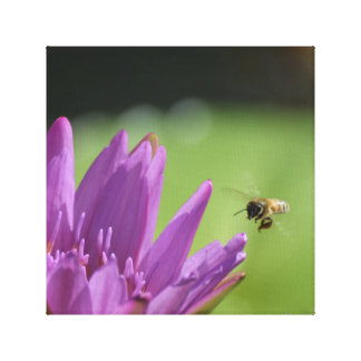 Flying Honey Bee Canvas Print
