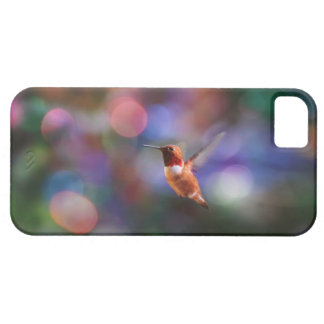 Flying Hummingbird and Colorful Background iPhone 5 Cases