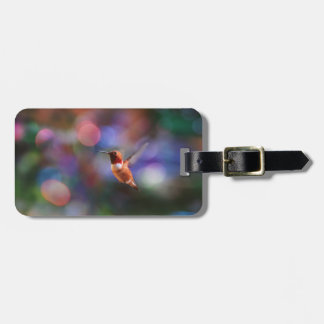 Flying Hummingbird and Colorful Background Luggage Tag