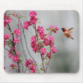 Flying Hummingbird and Flowers Mousepad