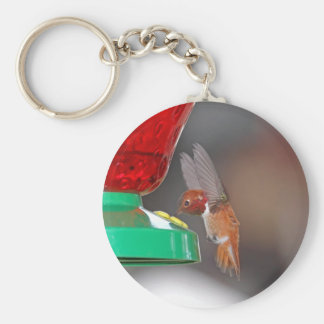Flying Hummingbird and Hummingbird Feeder Basic Round Button Key Ring