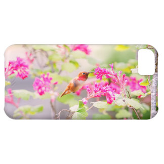 Flying Hummingbird and Red Currant Flowers Cover For iPhone 5C