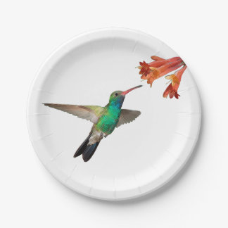 Flying hummingbird paper plates. 7 inch paper plate