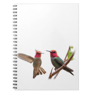 FLYING JEWELS NOTE BOOKS