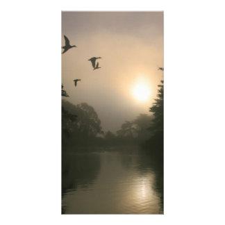 Flying Mallards and Morning Fog Card