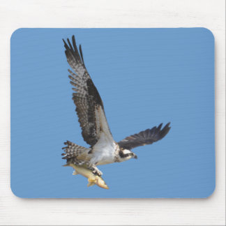Flying Osprey & Fish Wildlife Photography Mouse Pad