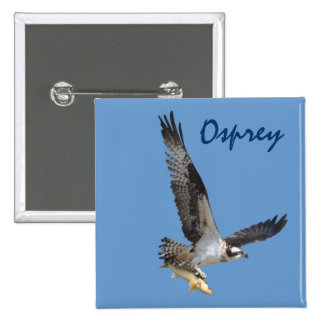 Flying Osprey Hunting for Fish 15 Cm Square Badge