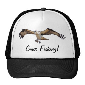 Flying Osprey Hunting for Fish Hats
