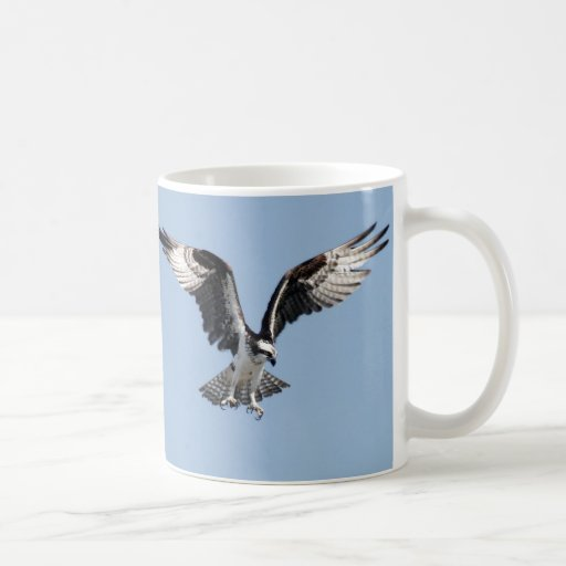 Flying Osprey Mugs
