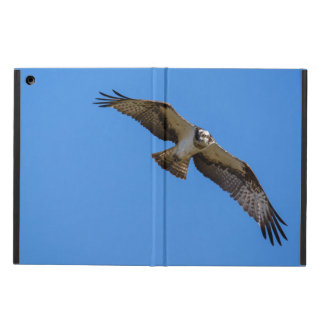 Flying osprey with a target in sight iPad air covers