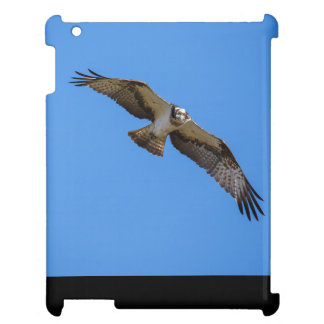 Flying osprey with a target in sight iPad cases