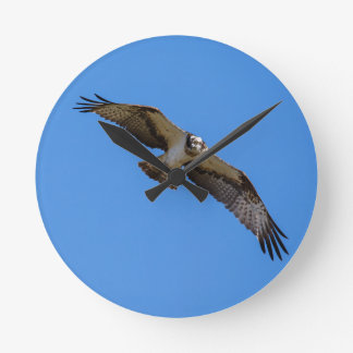 Flying osprey with a target in sight wallclock