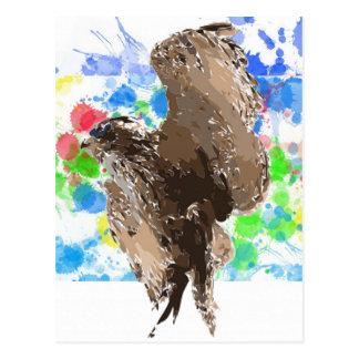 Flying Owl Postcard