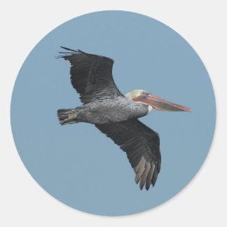 Flying Pelican 14 Sticker