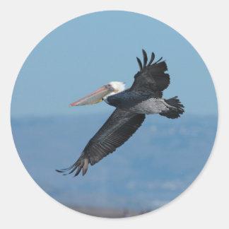 Flying Pelican 9 Sticker