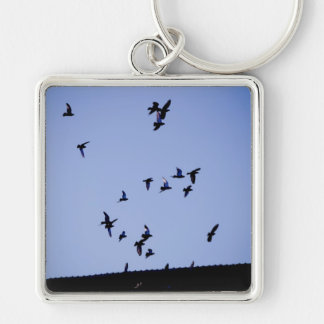 Flying pigeons Silver-Colored square key ring