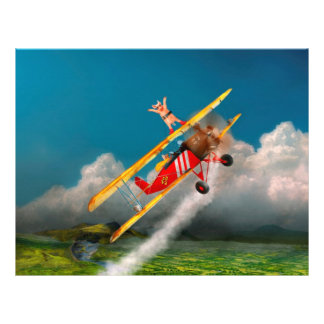 Flying Pigs - Plane - Hog Wild Custom Flyer