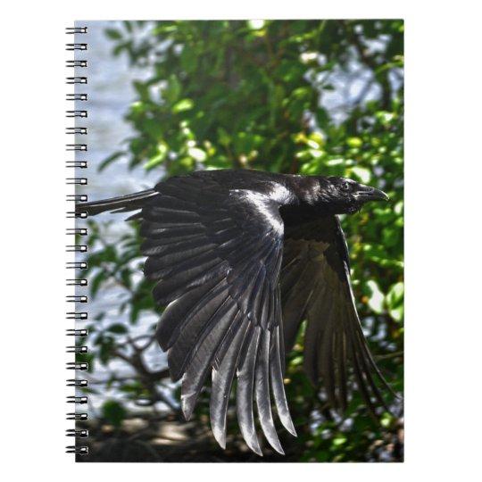 Flying Raven in Sunlight Wildlife Photo Notebook