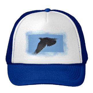 Flying Raven Modern Art in Blue Cap