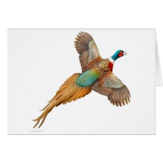 Flying Ringneck Pheasant Card