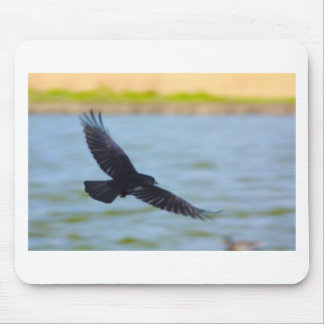 flying rook mouse pad