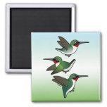 Flying Ruby-throated Hummingbird