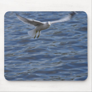Flying seagull wanting to get attention mouse pad