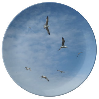 "Flying Seagulls 10.75"" Decorative Porcelain Plate"