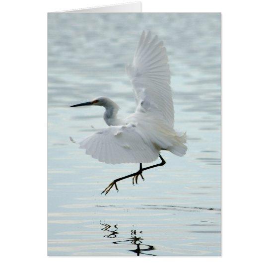 Flying Snowy Egret Card